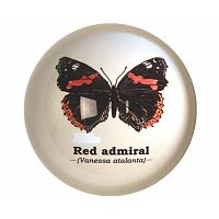 Butterflies papírnehezék - Gift Republic