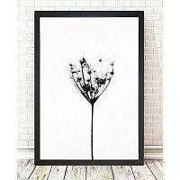 Misty Splender kép, 24 x 29 cm - Tablo Center