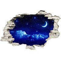Moonlight falmatrica - Ambiance