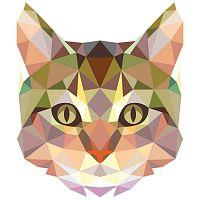 Origami Cat falmatrica - Ambiance