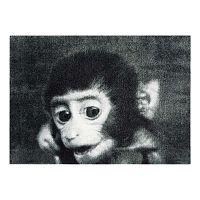 StateMat Monkey szürke lábtörlő, 50 x 75 cm - Mint Rugs