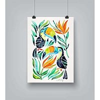Toucans poszter, 30 x 42 cm - Americanflat
