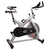 Fitness kerékpár inSPORTline Epsilon