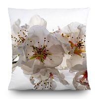 Flowers párna, 45 x 45 cm