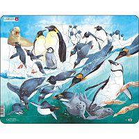 Larsen Puzzle Pingvinek, 500 darab