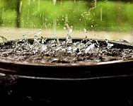 Az esővízgyűjtő tartállyal pénzt spórolhatnak. A feladatot egy hordó is megfelelően elláthatja.