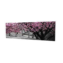 Cherry Blossom vászonkép, 80x30cm