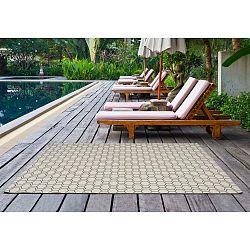 Clhoe szürkés-bézs szőnyeg, 160x230 cm - Universal