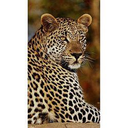 Leopard strandtörölköző nyomtatott mintával, 100 x 180 cm - Good Morning