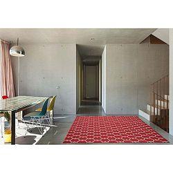 Trellis Red piros fokozottan ellenálló szőnyeg, 133 x 190 cm - Floorita