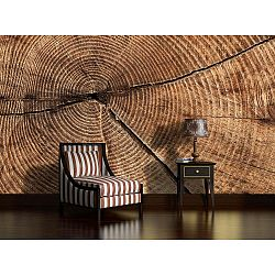Wooden Years nagyformátumú falitapéta, 416 x 254 cm - Vavex