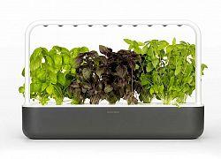 Kattintson és Grow Smart Garden 9 Grey