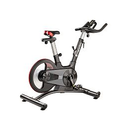 Fitness kerékpár inSPORTline Drakkaris